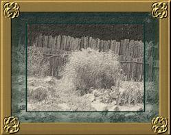 Ancient Boundary 02