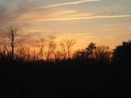 d2676-sunset03