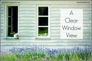debbielynne-kespert-clear-window