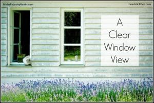debbielynne-kespert-clear-window