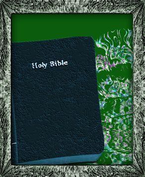 Discernment Bible