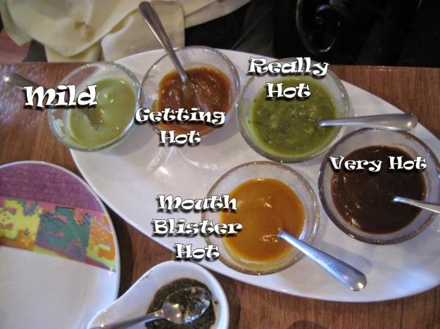 salsa-sampler