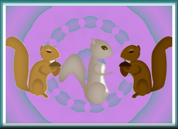 squirrel-sampler