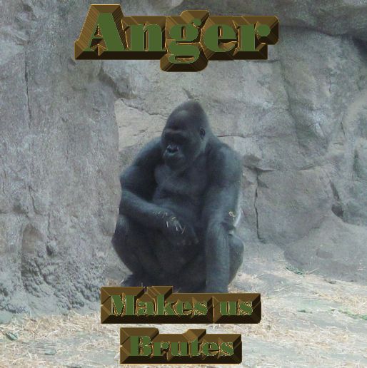 Anger Makes Us Brutes