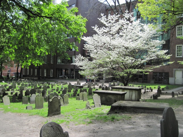 Spring in Boston May 9 2011 001