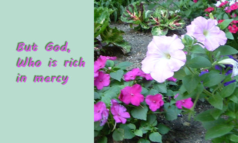 Rich In Mercy