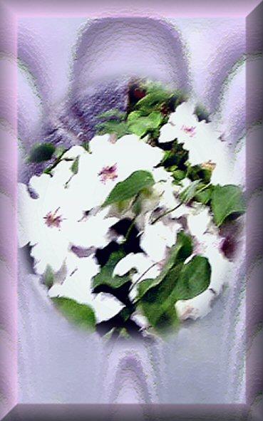 white flowers on satin