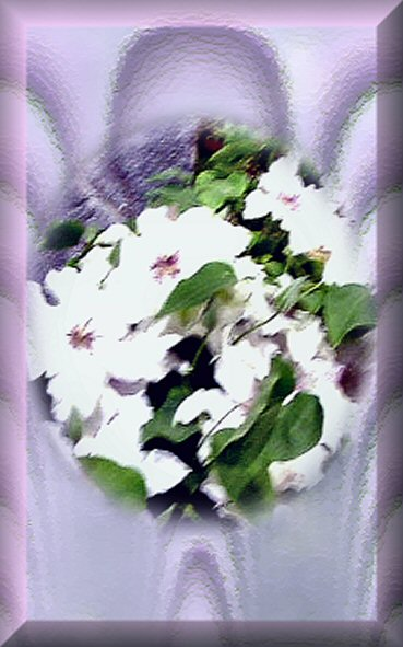 white flowers on satin