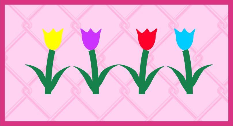 Tulip Sampler