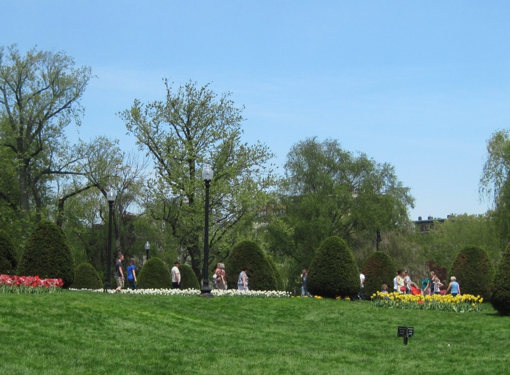 Photo of the Public Garden in Boston